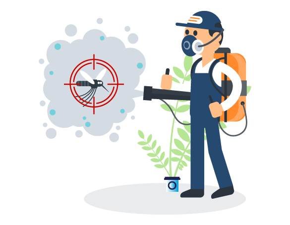 Professional Pest Control Mooloolaba